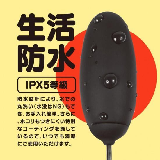 日本 GPRO BLACK ROTOR 加熱跳蛋-黑色
